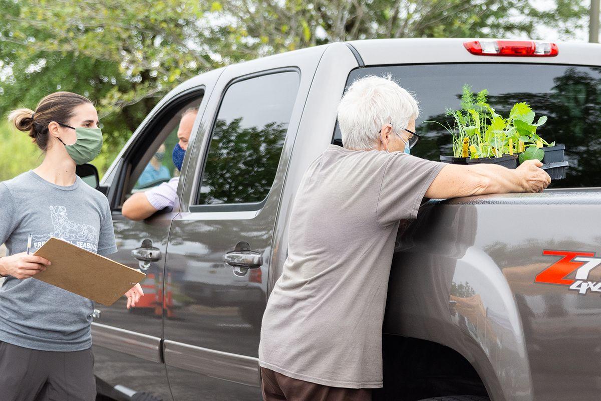 2020-09-23 STH Maddie Vol Plants Truck WEB.jpg
