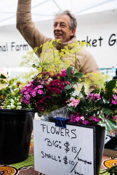 Animal-Farm-Downtown-Market-Winter-Flowers_WEB.jpg