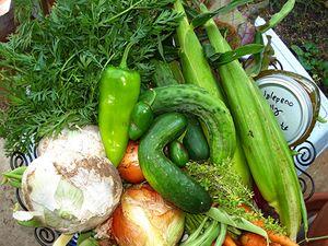 Summer Harvest HoHi 2009_475px.jpg