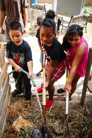 Jan-2015-Newsletter_BlackshearElem_SchoolGarden_450px.jpg
