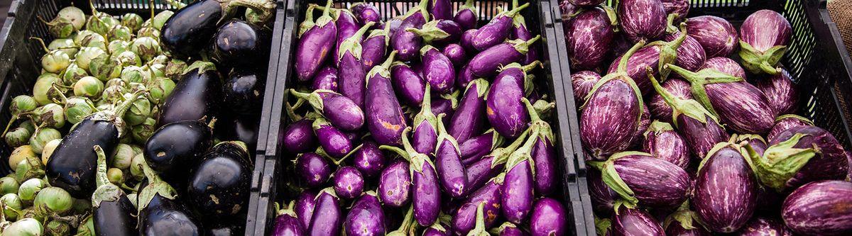 eggplants_1800px.jpg