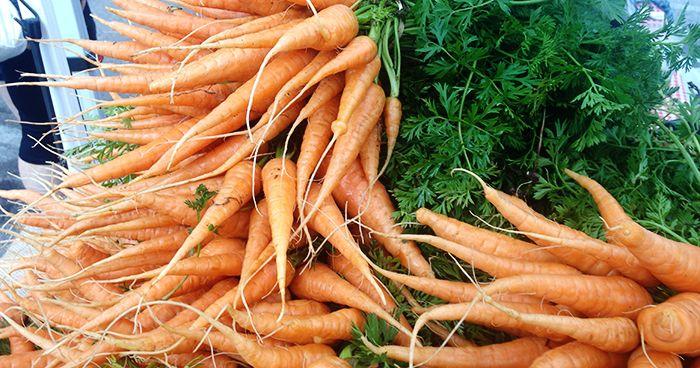 Carrots - web.jpg
