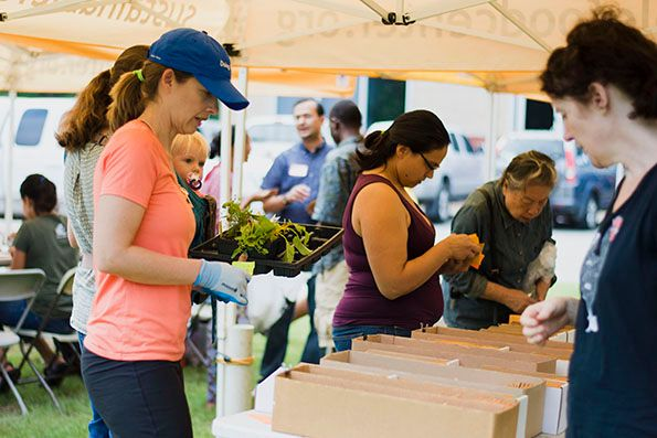 2017-09-28_Spread-the-Harvest-Participants-Getting-Seeds_IMG-01_WEBSITE.jpg
