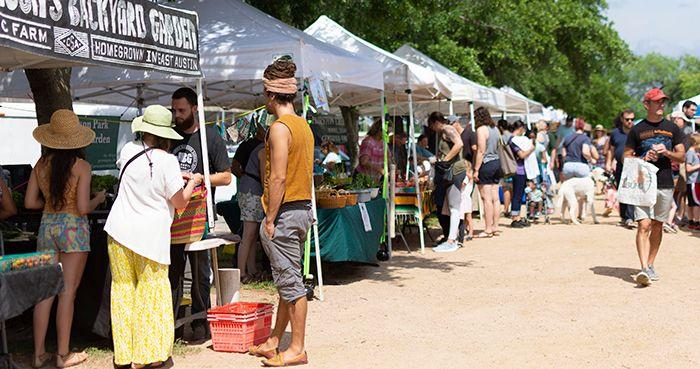 SFC Farmers' Market Sunset Valley - Long Shot - WEBSITE.jpg