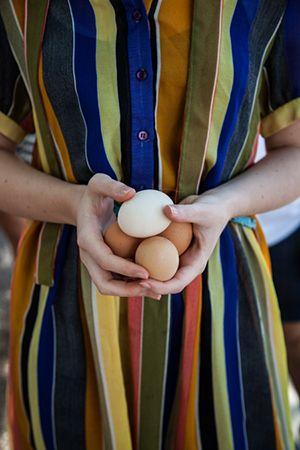 hands-holding-eggs_300px.jpg