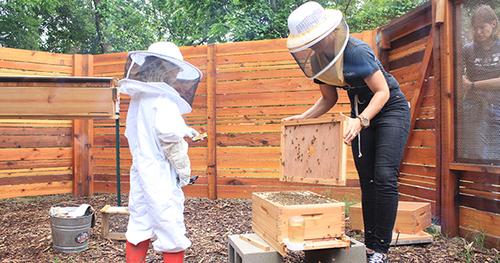 beekeeping-lesson_WEBSITE.jpg