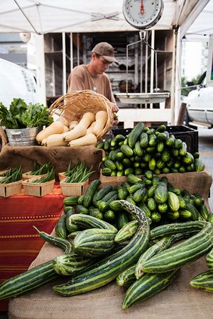 Market_Cucumbers_and_Squash_450px.jpg