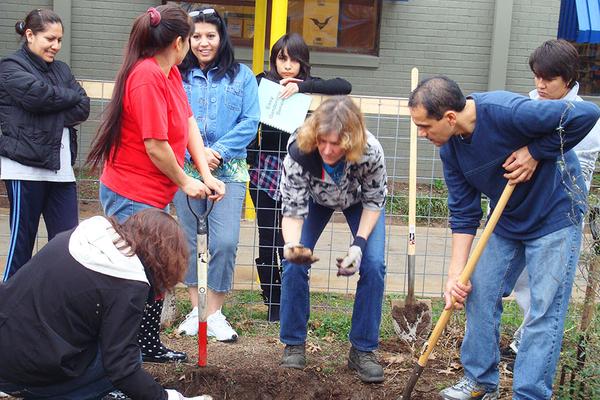 Basic-Organic-Gardening-class.jpg