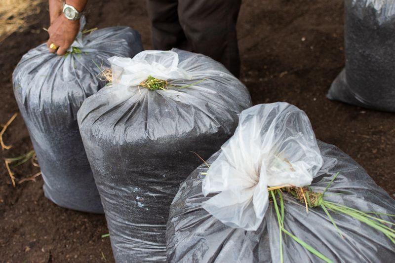 2019-09-19 STH Compost Bags IMG-01 WEB.jpg