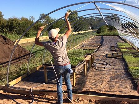 Lorig_building_greenhouse.jpg