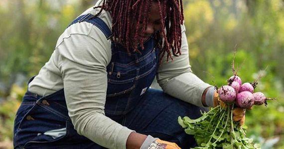 Dobbin Kauv Farm 1 - WEBSITE.jpg