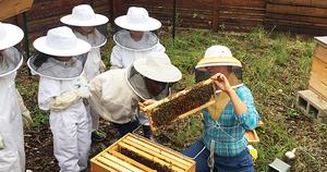 tara-showing-kids-bee-hive-class_NEWSLETTER.jpg
