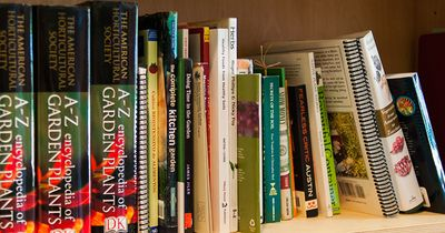 SFC-Grand-Opening-Bookshelf_WEB.jpg
