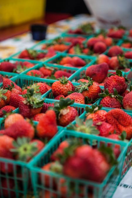 strawberries_in_baskets_450px.jpg