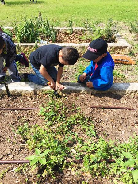 Graham-Elementary-Kids-in-Garden-Bed_WEBSITE.jpg