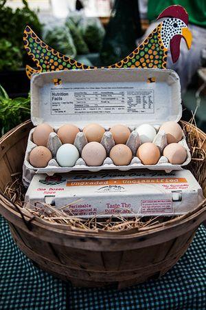 eggs_450px.jpg