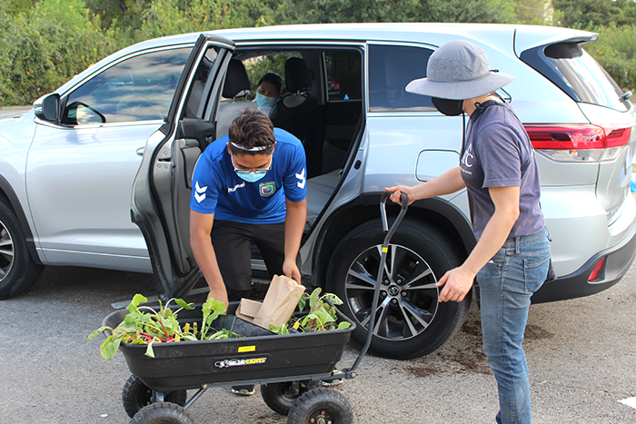 Blog_2021.09.15_Spread the Harvest Resource Giveaway Day_Participant packing plants in car.png