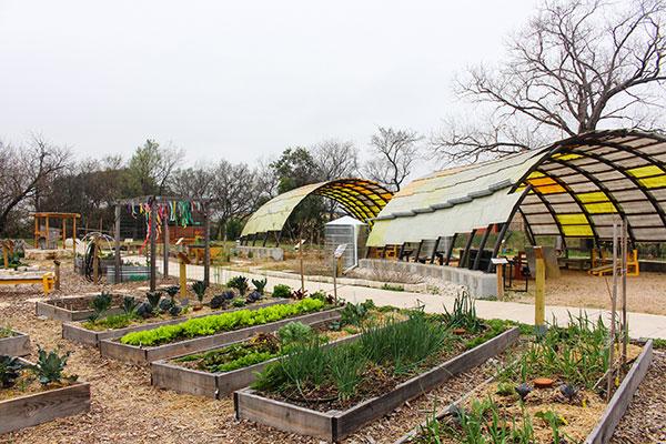 Teaching-Garden-1.jpg