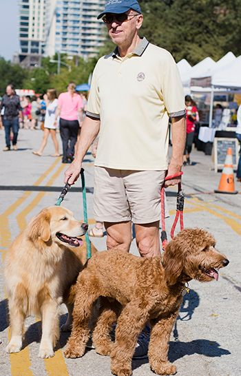 Downtown Man With Dogs