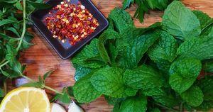 Mint Chimichurri Ingredients_WEBSITE.jpg