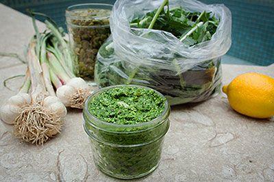 Any-Green-Pesto-horizontal_400px.jpg