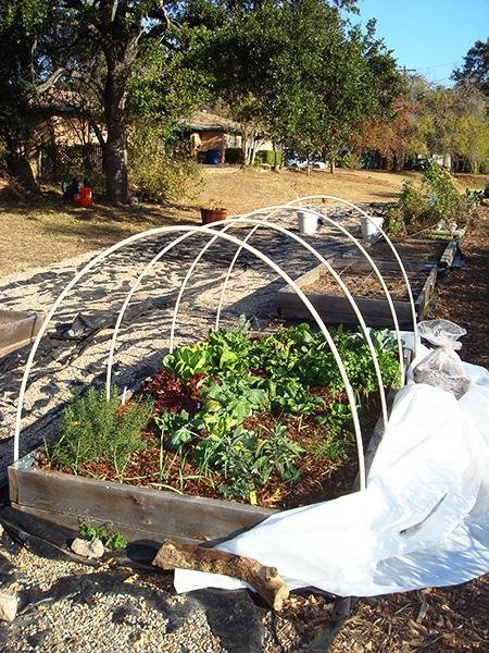 Winter-gardening_450px.jpg