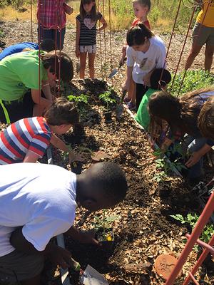 Kids-planting-2-450px.jpg