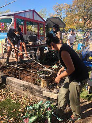 Rooted in Melanin_Volunteer Workday WEBSITE.jpg