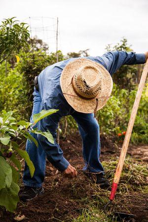 community_gardener_450px.jpg
