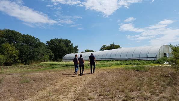 B5 Farm Visit Greenhouse