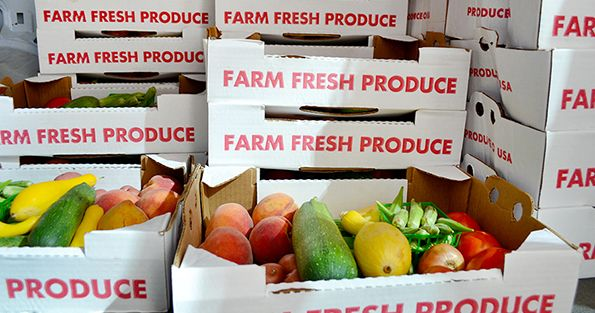 FTW-Delivery-OTC-Stacked-Produce-Boxes-In-Van_WEBSITE-V2.jpg