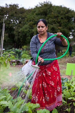 woman_watering_garden_450px.jpg