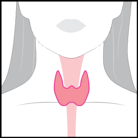 Thyroid20Womens.png