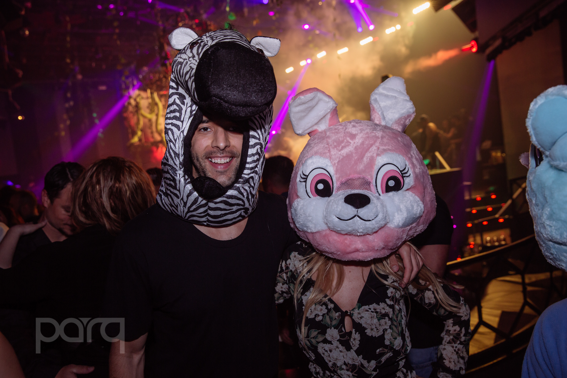 04.22.17 Zoo Funktion-33.jpg