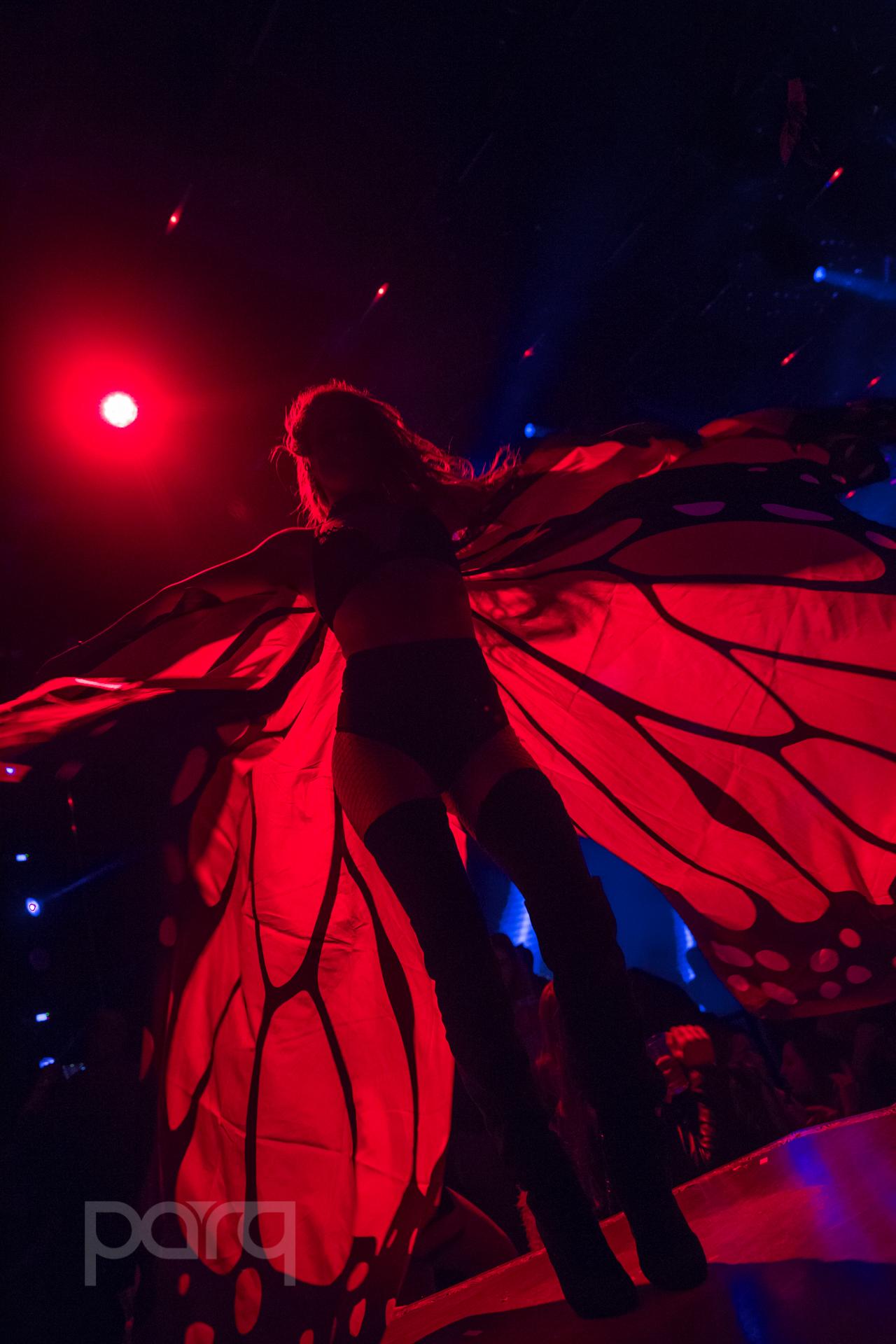 San-Diego-Nightclub-Zoo Funktion-18.jpg