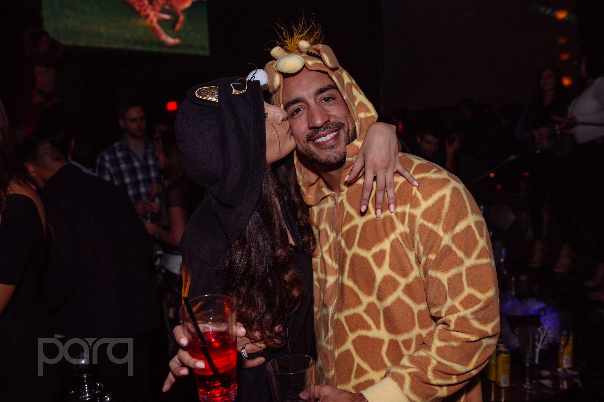 12.16.17 Parq - Zoo Funktion-32.jpg