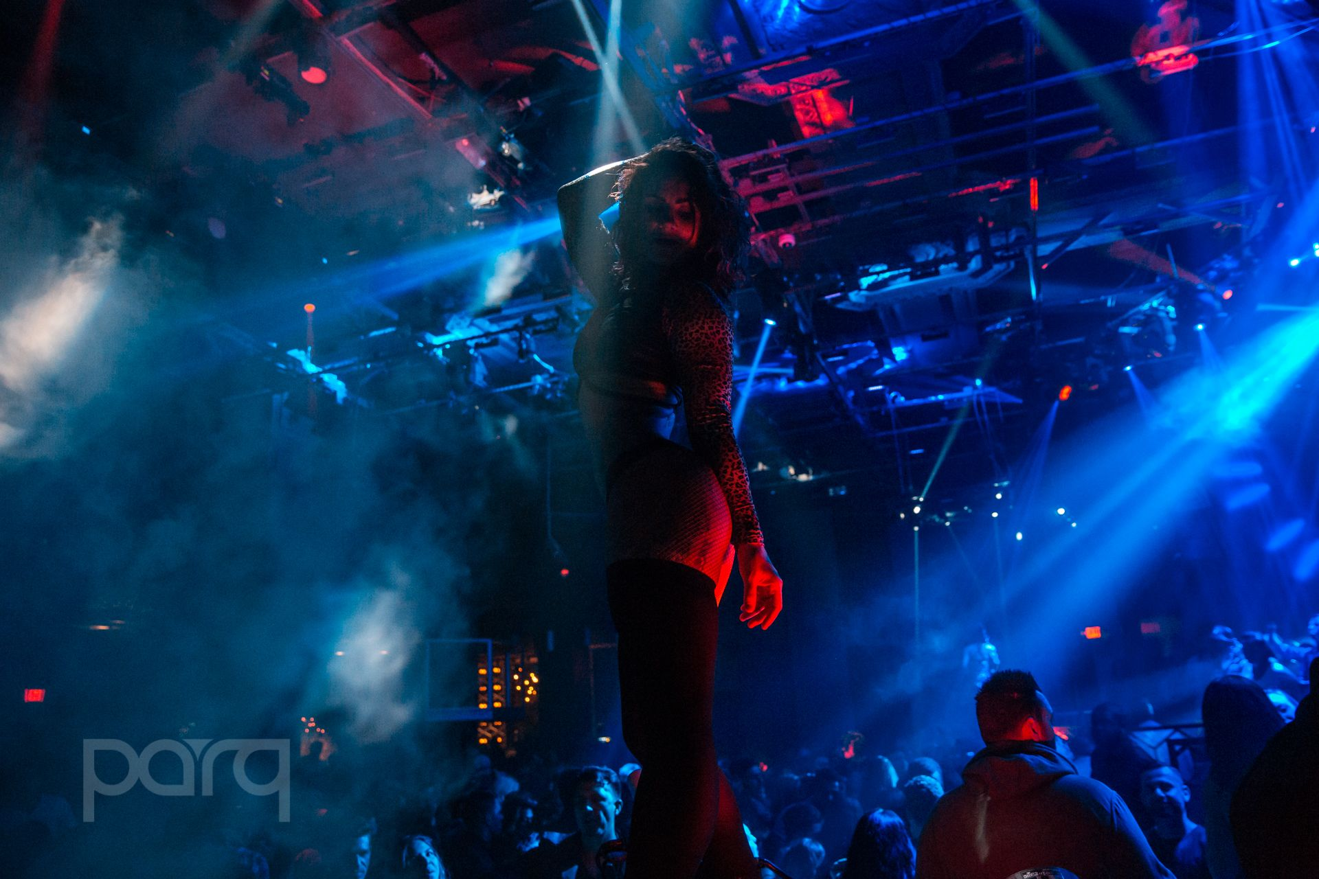 12.16.17 Parq - Zoo Funktion-30.jpg