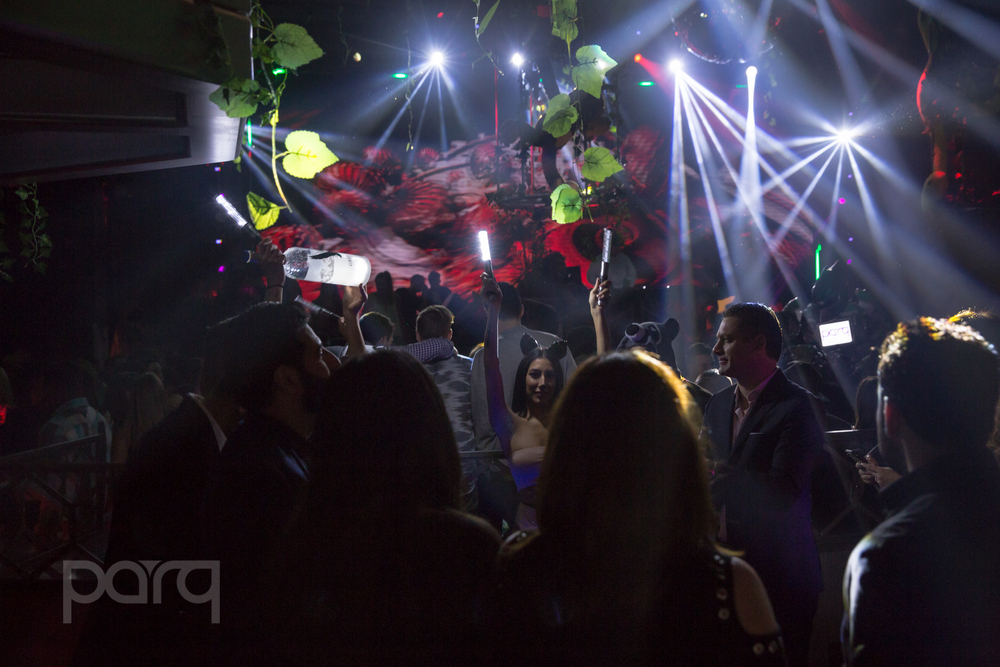 San-Diego-Nightclub-Zoo Funktion-6.jpg