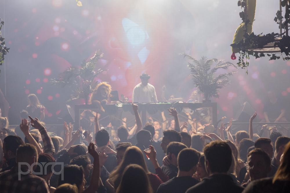 San-Diego-Nightclub-Zoo Funktion-8.jpg