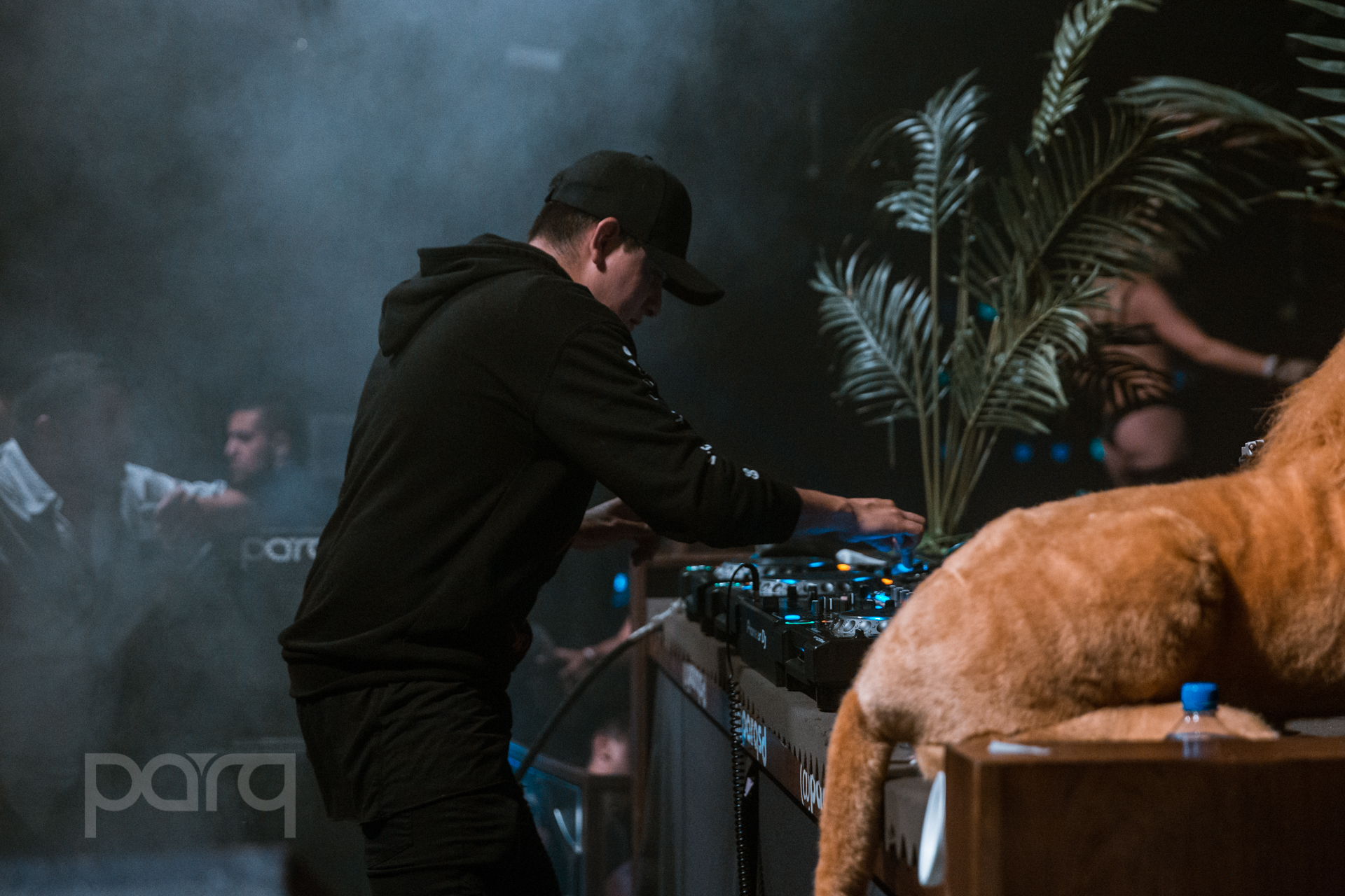 06.24.17 Zoo Funktion-30.jpg