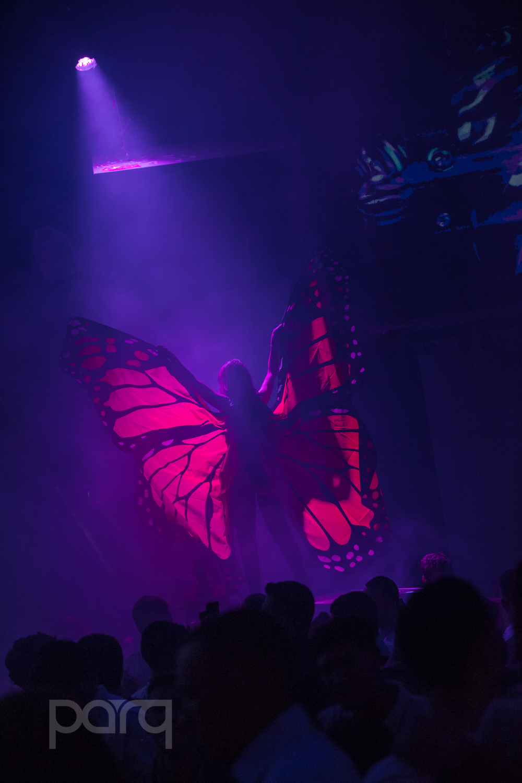 San-Diego-Nightclub-Zoo Funktion-10.jpg