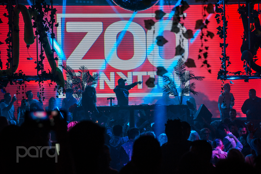06.24.17 Zoo Funktion-11.jpg