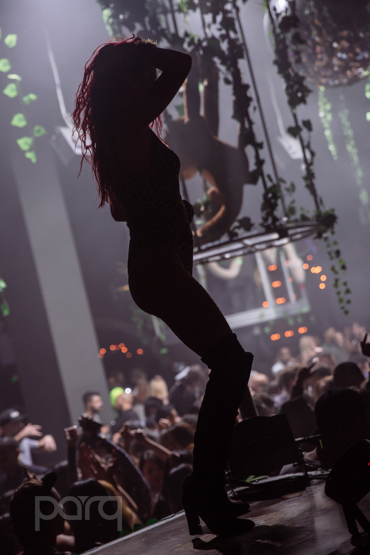 06.24.17 Zoo Funktion-18.jpg