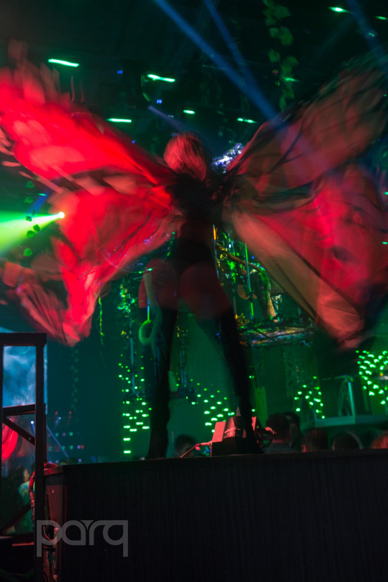 San-Diego-Nightclub-Zoo Funktion-37.jpg