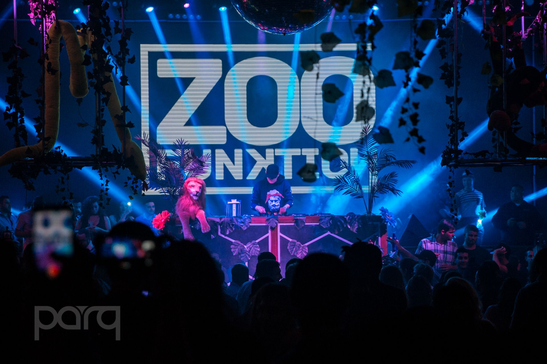 06.24.17 Zoo Funktion-1.jpg