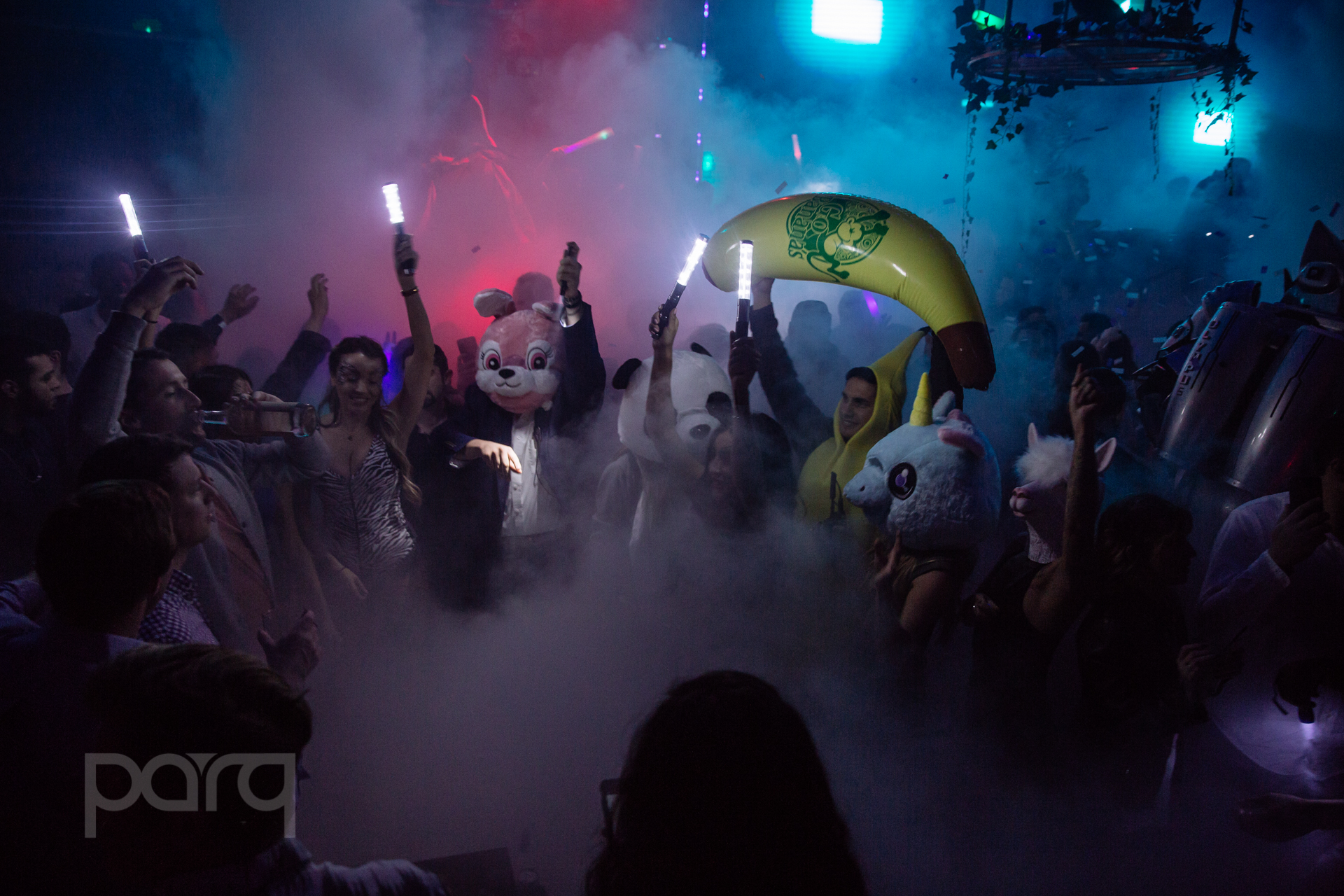 San-Diego-Nightclub-Zoo Funktion-50.jpg