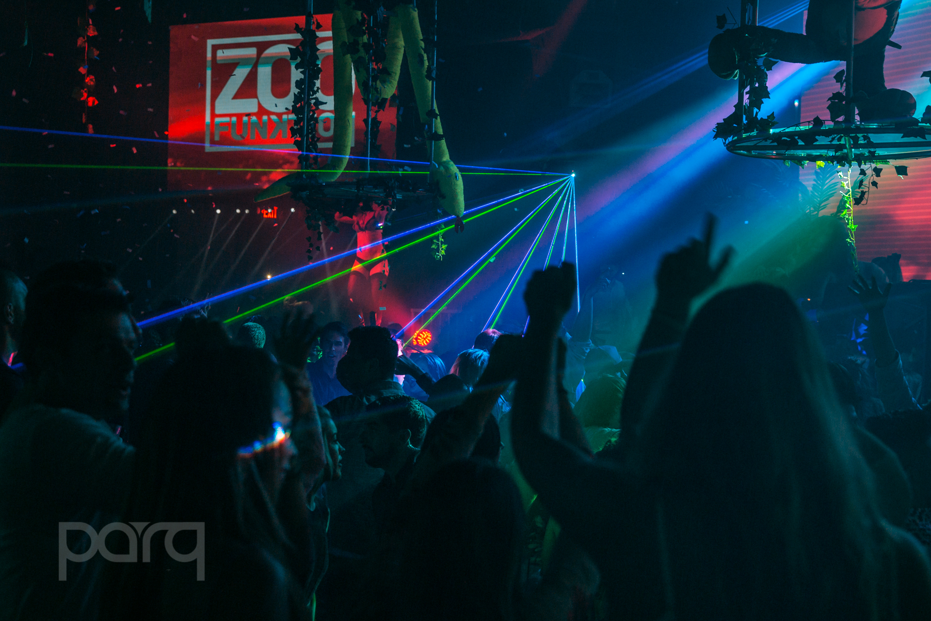 06.24.17 Zoo Funktion-38.jpg