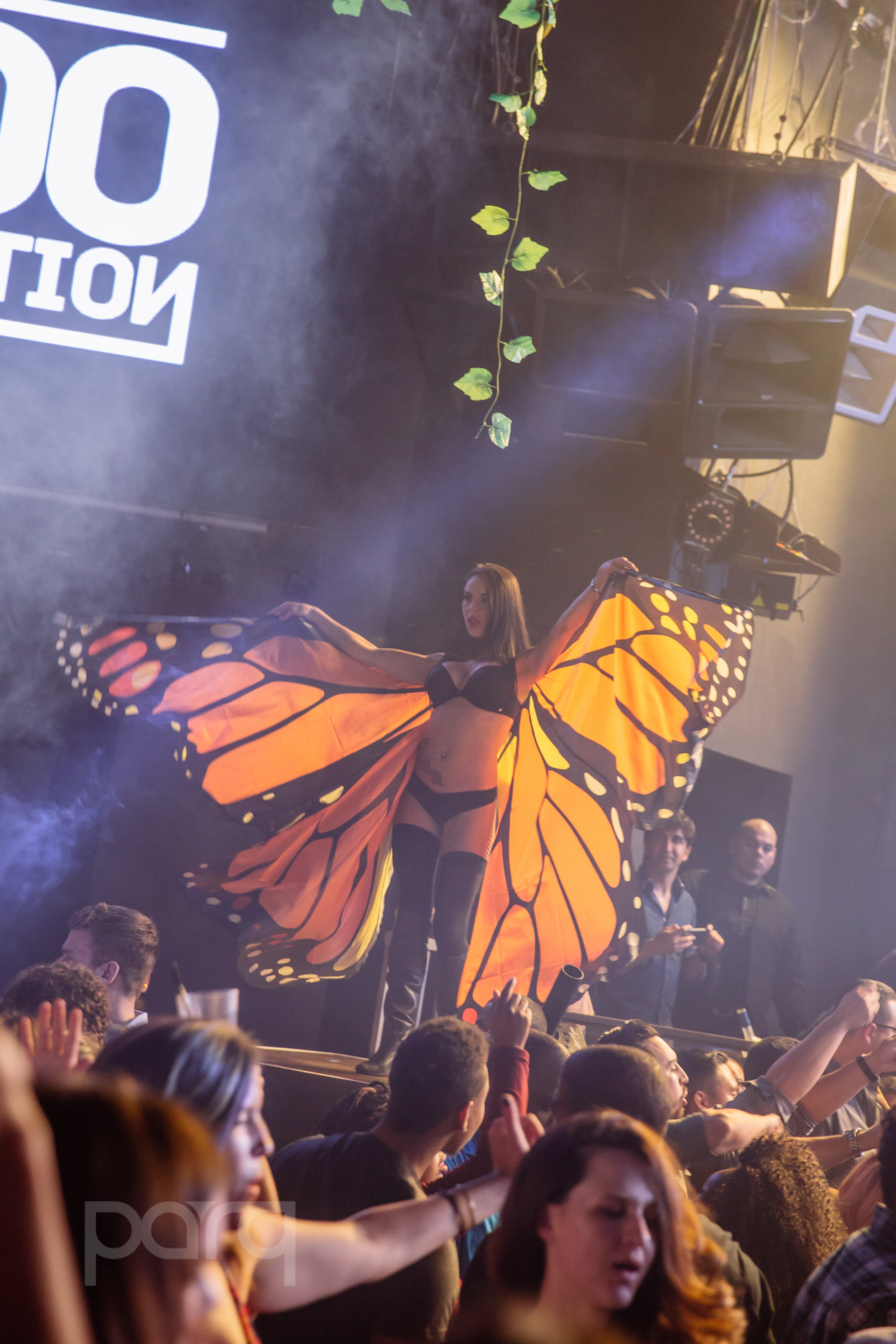 04.22.17 Zoo Funktion-15.jpg