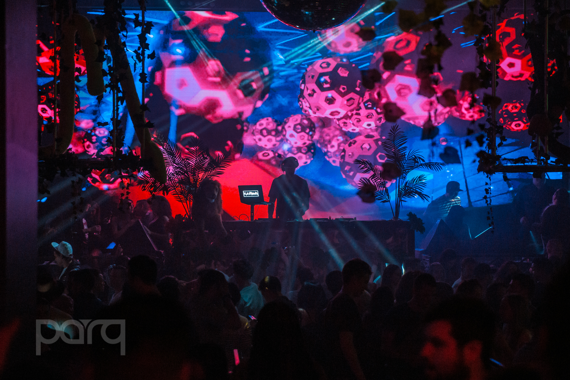 06.24.17 Zoo Funktion-23.jpg