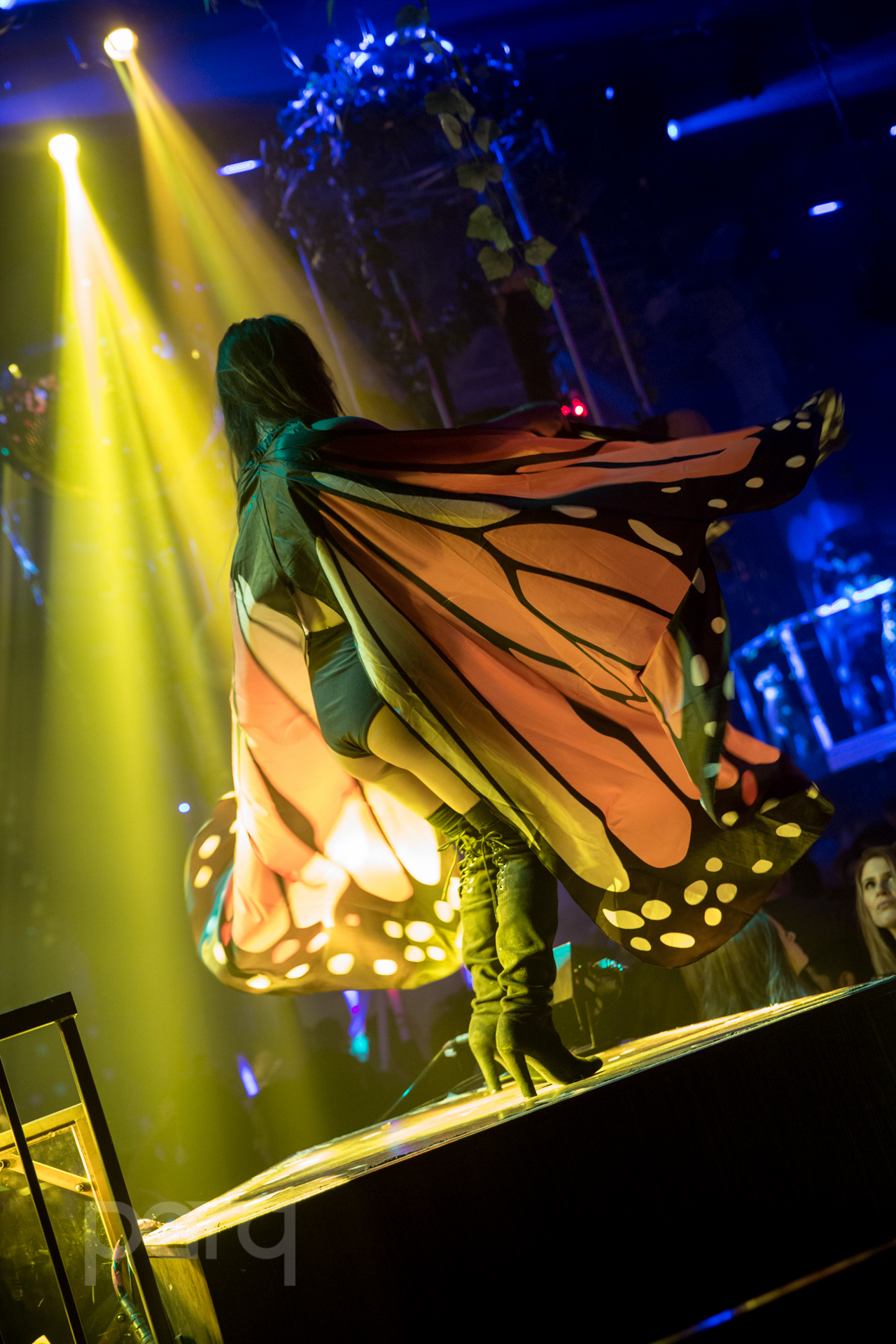 San-Diego-Nightclub-Zoo Funktion-45.jpg